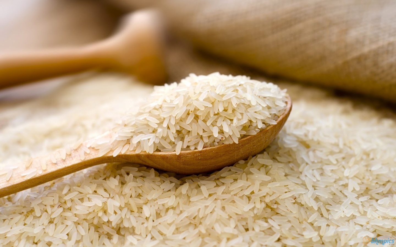 rice & Pasta from Envir